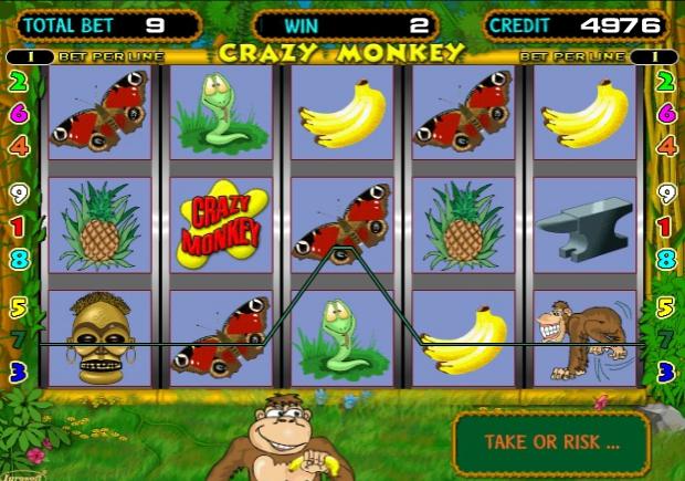 игровой автомат обезьянки специальные символы